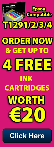 T1291 Ink Cartridges