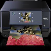 Epson XP-710  Ink Cartridges