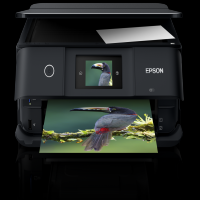 Epson XP-8500 ink cartridges