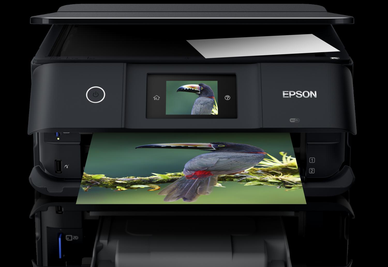 Epson XP-8500 ink cartridges
